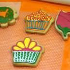 MTPlus - Galletas Decoradas