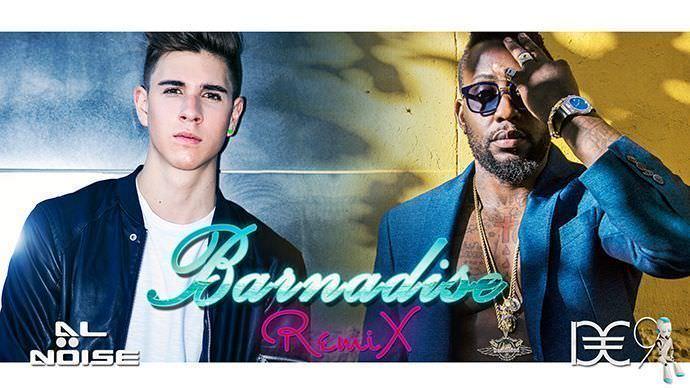 Barnadise_DE9