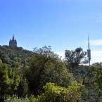 El Templo y la Torre