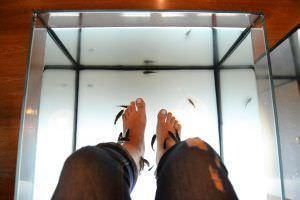 Terapia con peces - AquaBliss