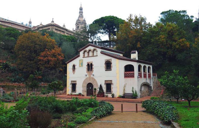 Jard n bot nico hist rico un buen d a en barcelona for Barcelona jardin botanico