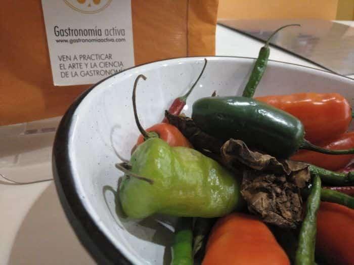 Gastronomía Activa