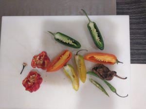 Chiles en Gastronomía Activa