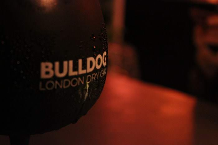 Bulldog x Nuba