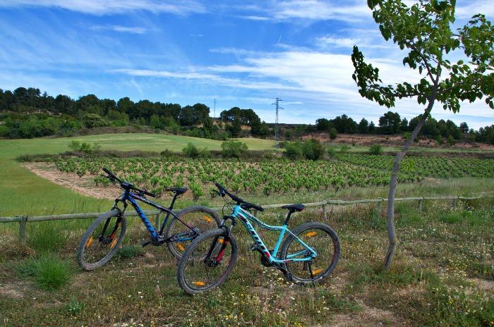 Las rutas en bici son una manera diferente de conocer el Penedès