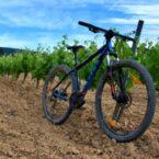 La primera actividad que realizamos fue la ruta en bicicleta