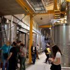 Proceso de vinificación de los vinos de la bodega